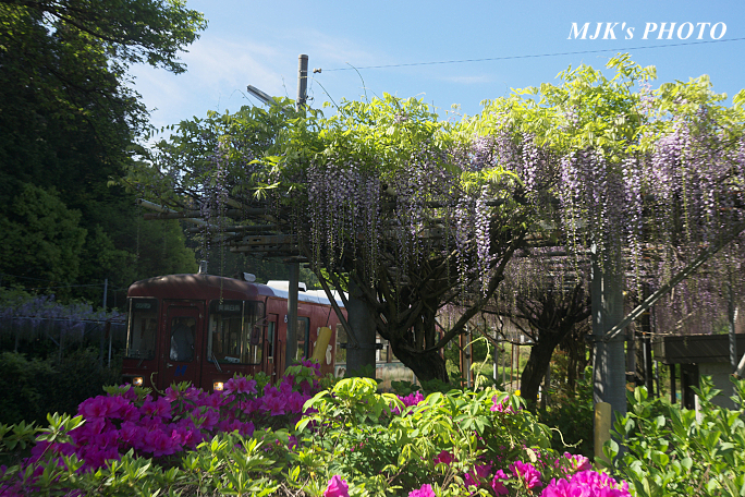 nagatetsu6837.jpg
