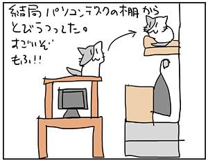 mofu4_20170515205134738.jpg