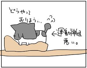 moufu6_20170514172751f60.jpg
