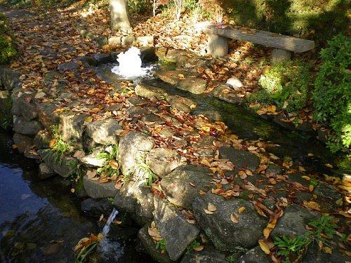 仲田公園・湧き水
