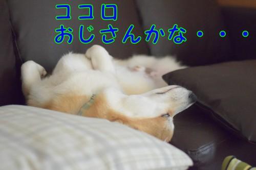 20170626_4.jpg