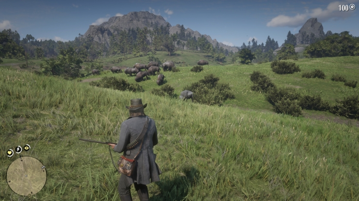 Red Dead Redemption 2_20181103082430
