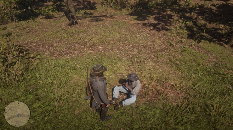 Red Dead Redemption 2_20181103091558