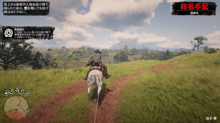 Red Dead Redemption 2_20181121225700