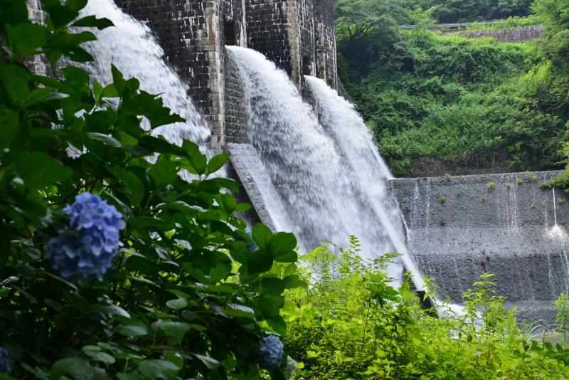 「豊稔ダム全門放水」1