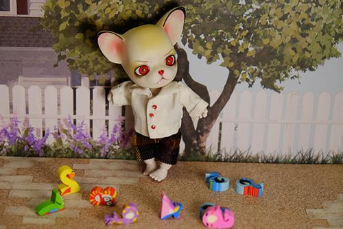 チビチビ消しゴムに囲まれて、不機嫌そうな球体関節人形の動物ドール、パンジュ・ブラックルシアン・ロイ。