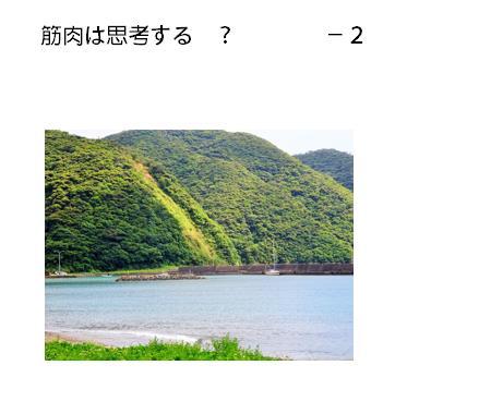 03_20170524115157acc.jpg