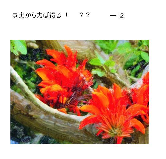 03_201705290959460af.jpg