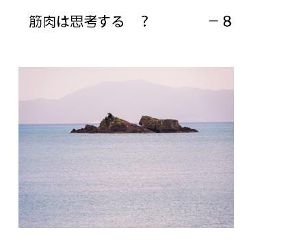 14_2017052411514061c.jpg