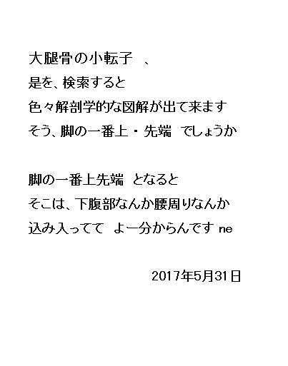 14_20170531080442adb.jpg