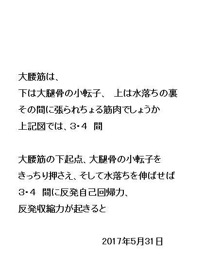 16_20170531080439bdd.jpg