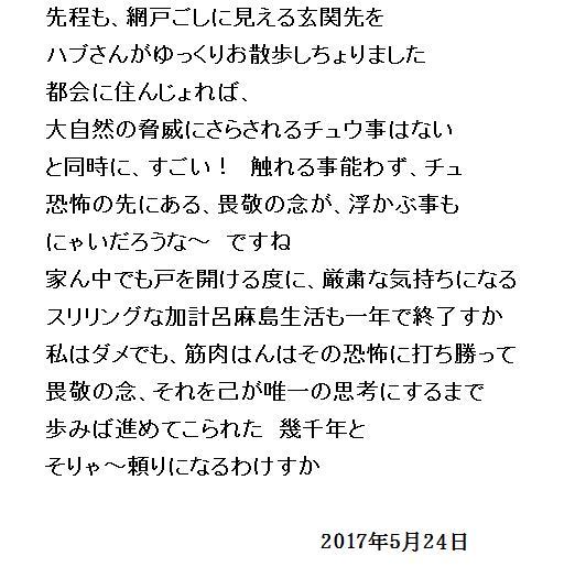 17_20170524115136276.jpg