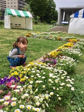 piyoko20170516-3.jpg