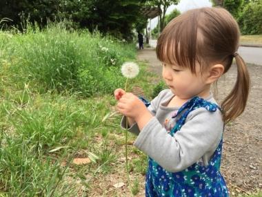 piyoko20170516-7.jpg
