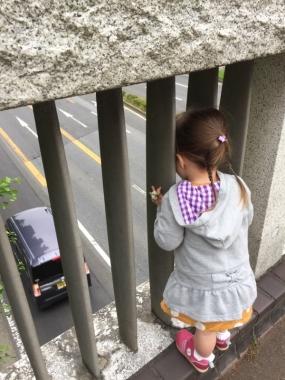 piyoko20170517-11.jpg
