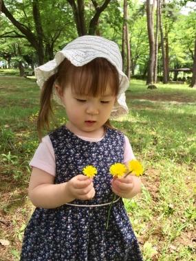 piyoko20170517-3.jpg