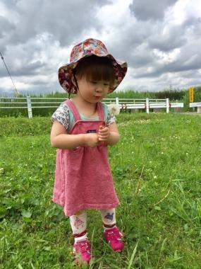 piyoko20170518-3.jpg
