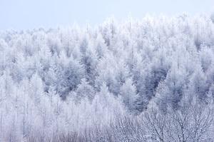 雪山の密室