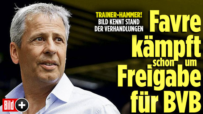 BILD KENNT STAND DER VERHANDLUNGE Favre kämpft Freigabe für BVB
