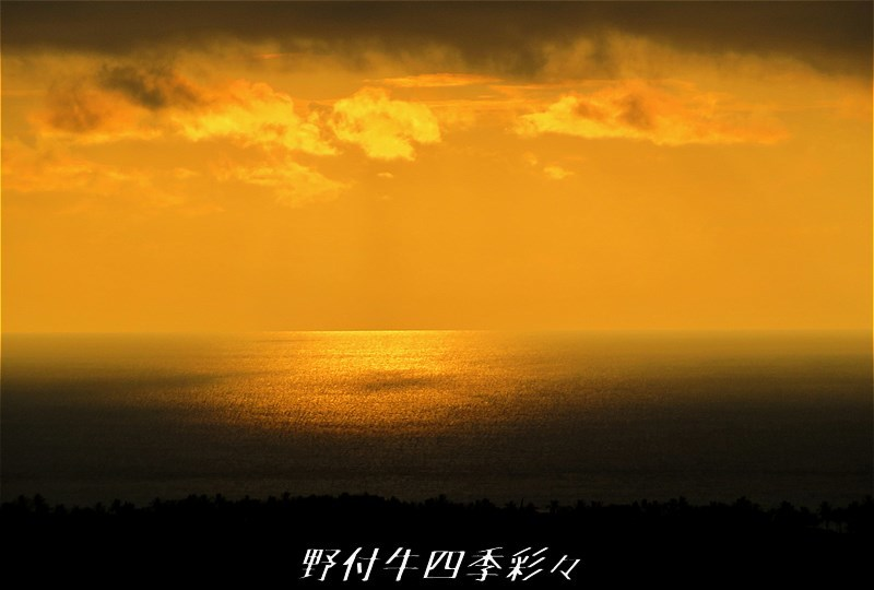 s-IMG_1570.jpg