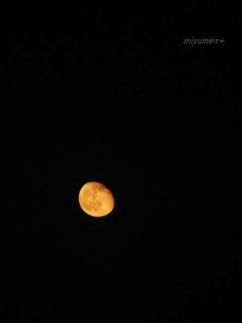 お月さま170514