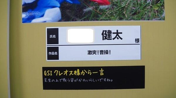 P7020163 - コピー