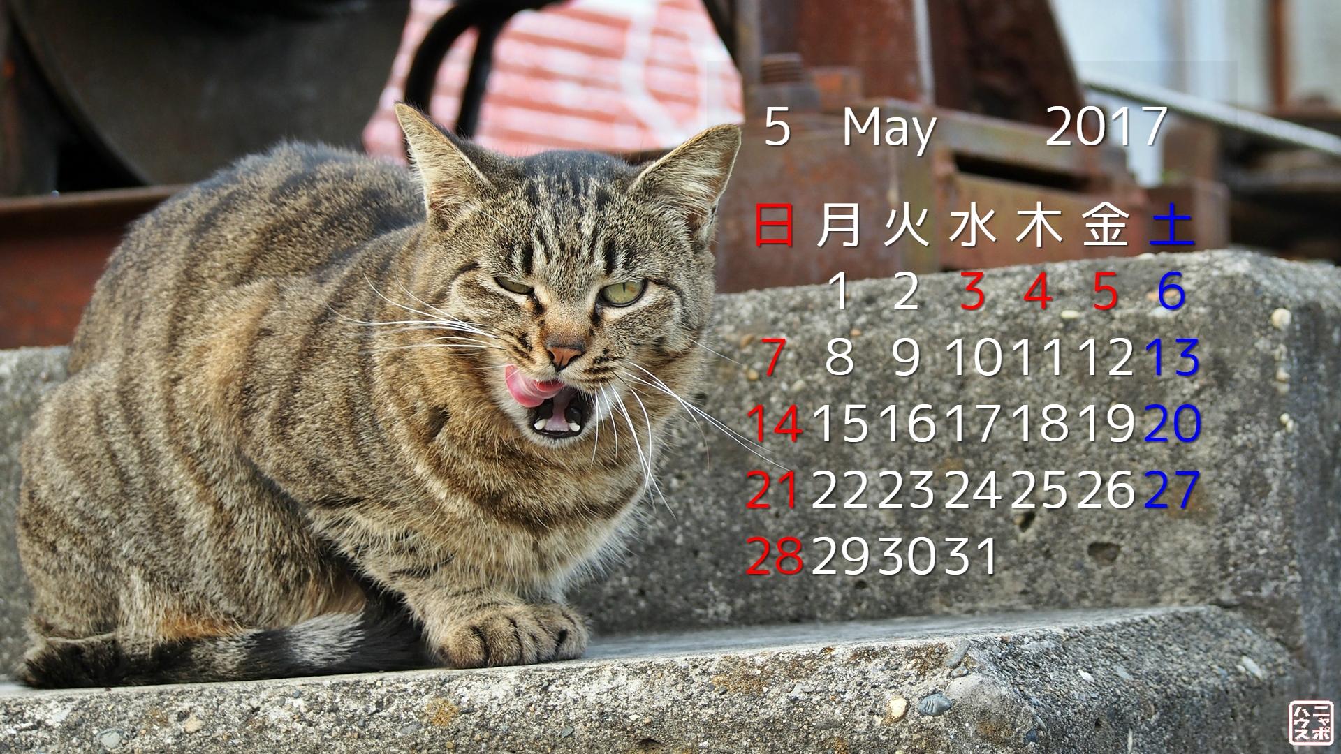 2017年4月 猫デスクトップカレンダー