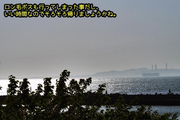 ニャポ旅37 後編