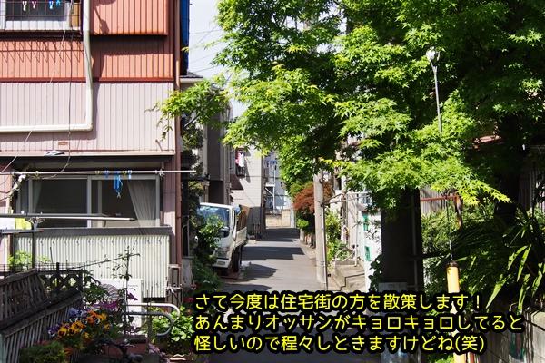 ニャポ旅38 羽田編