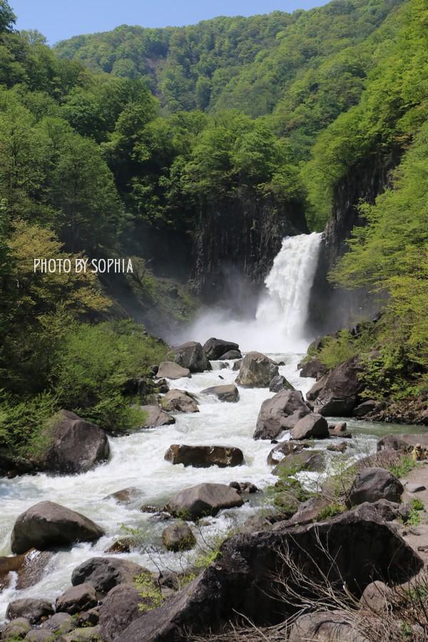 苗名滝・春