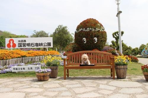 明石海峡公園