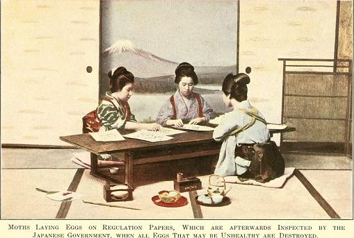 たすき掛けの女性たち(1911年)