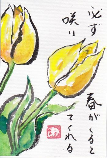IMG_20170429_0003.jpg