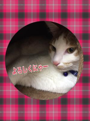 fc2blog_20170703114031d3f.jpg