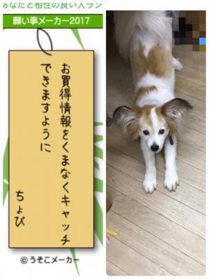 fc2blog_20170707120947a6b.jpg