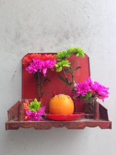 flowerout.jpg