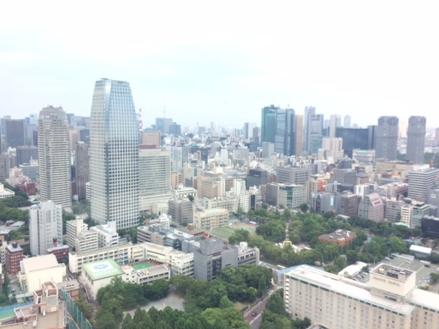 はとバスツアー東京タワー景色