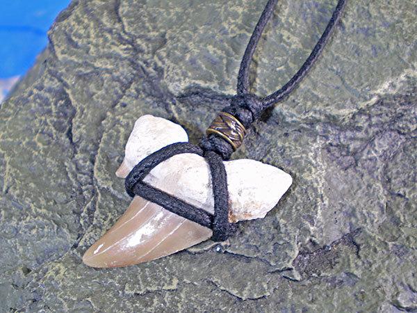 シンプルデザイン★サメ歯化石チョーカー(ネックレス)
