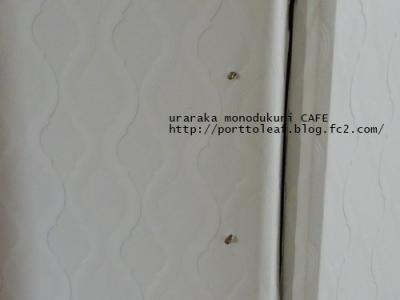 IMGP3188.jpg
