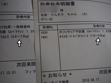 P5140058.jpg