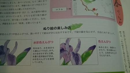 塗り絵絵葉書2