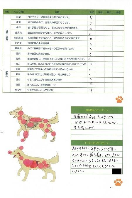 動物病院0415大起水産39