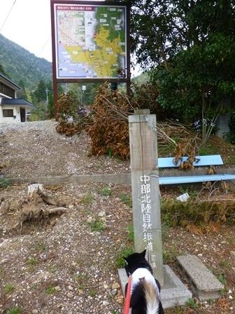 須賀谷温泉朝のお散歩3