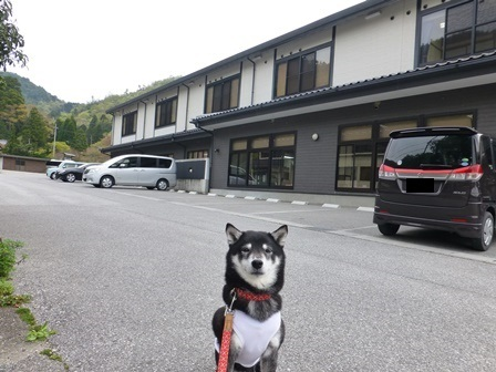 須賀谷温泉朝のお散歩29