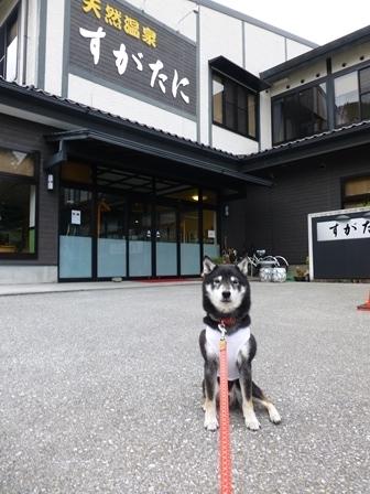須賀谷温泉朝食1