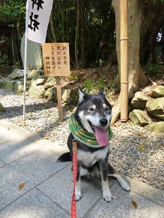 神明神社9
