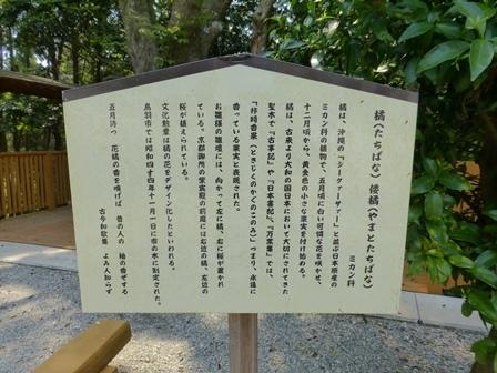 神明神社45