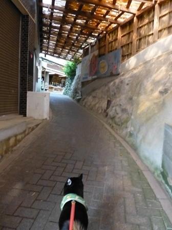 大王埼灯台7