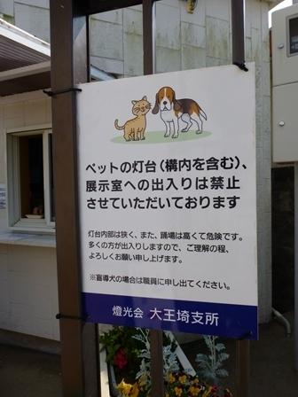 大王埼灯台15