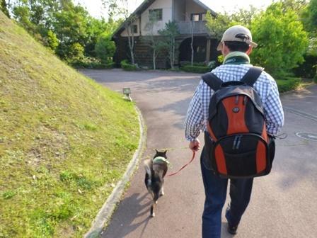 フィオーレ志摩お散歩9